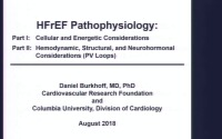 Pathophysiology I: Cellular and energetic considerations