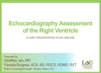 Echocardiography Assessment of the Right Ventricle