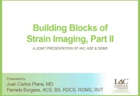 Building Blocks of Strain Imaging, Part II
