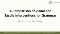 Comparison of Visual and Tactile Interventions: Transforming Grammar Learning