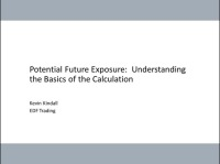 Potential Future Exposure - Basics of the Calculations