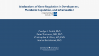 Mechanisms of Gene Regulation in Development, Metabolic Regulation, and Inflammation