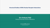 Structural Studies of DNA: Nuclear Receptor Interactions