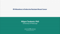 ER Alterations in Endocrine Resistant Breast Cancer