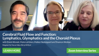 Cerebral Fluid Flow and Function: Lymphatics, Glymphatics and the Choroid Plexus