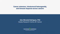 Cancer stemness, intratumoral heterogeneity, and immune response across cancers