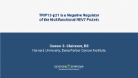 TRIP13-p31 is a negative regulator of the multifunctional REV7 protein
