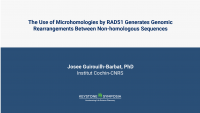 The Use of Microhomologies by RAD51 Generates Genomic Rearrangements Between Non-homologous Sequences