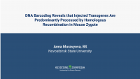 DNA barcoding reveals that injected transgenes are predominantly processed by homologous recombination in mouse zygote