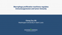 Macrophage proliferation machinery drives immunosuppression and tumor progression