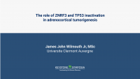 The role of ZNRF3 and TP53 inactivation in adrenocortical tumorigenesis