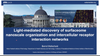 Light-Mediated Discovery of Surfaceome Nanoscale Organization and Inter-Cellular Receptor Interaction Networks