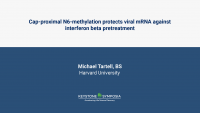 Cap-proximal N6-methylation protects viral mRNA against interferon beta pretreatment