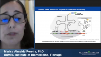 Short Talk: Lack of m5U Modification in tRNAs Induces the Formation of tRNA-Derived Fragments