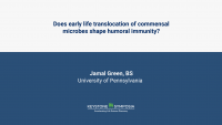 Does early life translocation of commensal microbes shape humoral immunity?