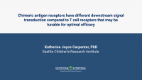 Chimeric antigen receptors have different downstream signal transduction compared to T cell receptors that may be tunable for optimal efficacy