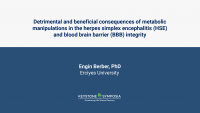 Detrimental and beneficial consequences of metabolic manipulations in the herpes simplex encephalitis (HSE) and blood brain barrier (BBB) integrity