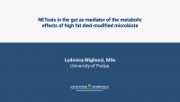 NETosis in the gut as mediator of the metabolic effects of high fat died-modified microbiota