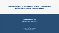 Peripheral Effect of Adipogenesis on ATM Expression and Mirna-181b Levels in Cardiomyoblasts