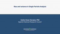 Bias and variance in Single Particle Analysis