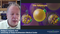 Novel Insights into the Endocrine Actions of the Adipocyte icon