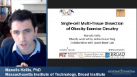 Single-Cell Multi-Tissue Dissection of Obesity-Exercise Circuitry in Human and Mouse