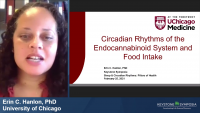 Circadian Rhythms of the Endocannabinoid System and Food Intake