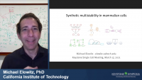 Multicellular Circuit Design: Natural and Synthetic