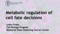 Metabolic Control of Cell Fate Decisions in Stem Cells and Cancer Cells