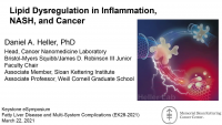 Lipid Dysregulation in Inflammation, NASH, and Cancer
