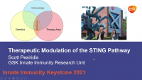 Therapeutic Modulation of the STING Pathway