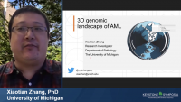 Short Talk: 3D Genomics Analysis in Acute Myeloid Leukemia Reveals the Activation of the Homeobox Genes Driven Leukemic-Specific 3D Network icon