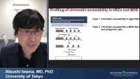 Chromatin Accessibility in MDS Stem and Progenitor Cells icon