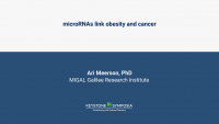 microRNAs link obesity and cancer icon