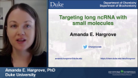 Targeting Long Noncoding RNA with Small Molecules icon