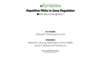 Repetitive RNAs in Gene Regulation icon