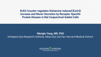 RvD2 Counter-regulates Histamine-induced [Ca2+]i Increase and Mucin Secretion by Receptor Specific Protein Kinases in Rat Conjunctival Goblet Cells