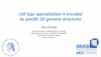 Specialization of Brain Cell Types is Encoded by Specific 3D Genome Structures