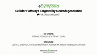 Cellular Pathways Targeted by Neurodegeneration icon