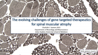 The Evolving Challenges of Gene Targeted Therapeutics for SMA icon