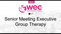 Senior Meeting Executive Group Therapy