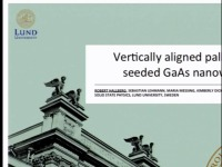 Straight and Vertically Aligned Palladium-Seeded GaAs Nanowires