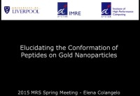 Characterizing the Organization and Investigating the Conformation of Peptide Self-Assembled Monolayers on Gold Nanoparticles: An Experimental and Computational Approach
