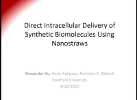 Direct Intracellular Delivery of Synthetic Biomolecules Using Nanostraws