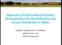 Advanced 1D Nanomaterial-Assisted Electroporation for Novel Bacteria and Viruses Disinfection