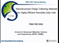 Nanostructured Charge Collecting Materials for Highly Efficient Perovskite Solar Cells