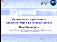 Tutorial - Emerging Applications of Nanowires in Life Sciences and Optoelectronics