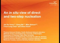VV2.02 - An In Situ View of Direct and Two-Step Nucleation Dynamics