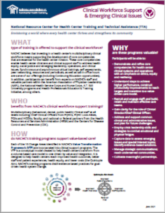 Clinical Workforce Support & Emerging Clinical Issues