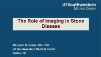 Role of Imaging in Stone Disease